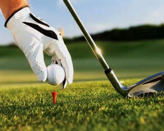 ALA Golf Team
