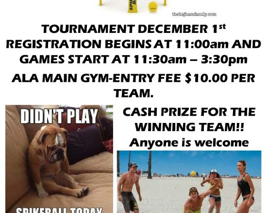 Join the Spikeball Tournament at ALA