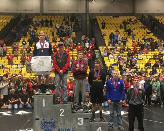 ALA Wrestling Results from State Competition