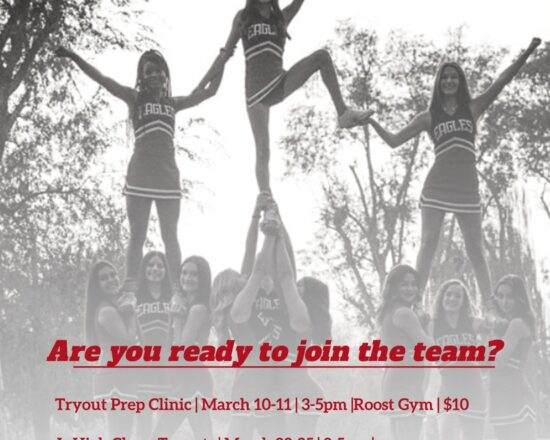 ALA Cheer Tryout Information